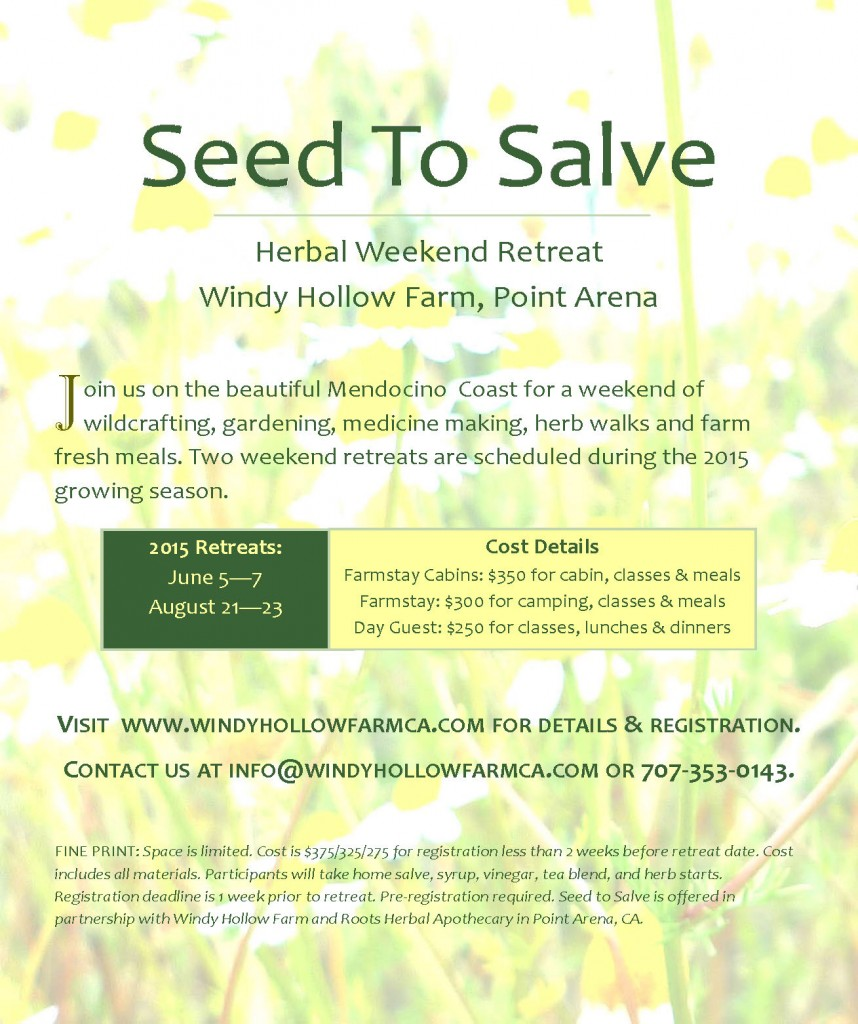 Dr. Rachel Farber seed-to-salve-flyer-2015-858x1024 Seed to Salve Herbal Weekend Retreat  santa cruz acupuncture