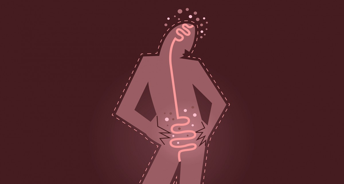 Rachel Farber Wellness Gut-Microbiome-2 THE GUT MICROBIOME AND WHAT IT MEANS FOR YOUR HEALTH (PART 4)  santa cruz acupuncture