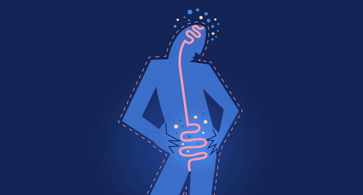 Dr. Rachel Farber Gut-Microbiome THE GUT MICROBIOME AND WHAT IT MEANS FOR YOUR HEALTH (PART 2)